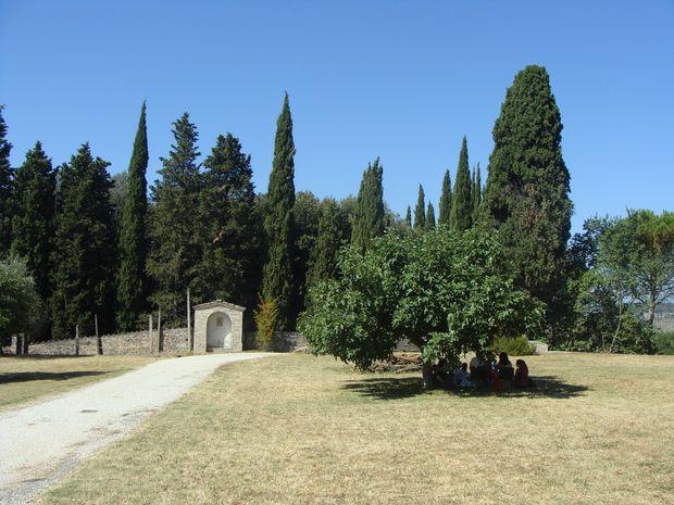 Figa w klasztornym ogrodzie